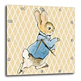 3dRose dpp_79399_2 Peter Rabbit Vintage Art Animals Wall Clock, 13 by 13-Inch Review