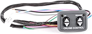 Rostra 250-3592 Dash Mount Cruise Control Switch