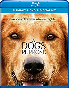 Cover Image for 'Dog's Purpose, A [Blu-ray + DVD + Digital HD]'