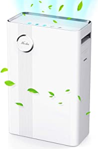 Mooka Air Purifier for Large Rooms True HEPA Air Filter, Activated Carbon, 23dB High CADR Air Cleaner for 1076 Sq. Ft., Allergies, Pollen, Smoke, Dust, Pet Dander Fast Purification, Sleep Mode
