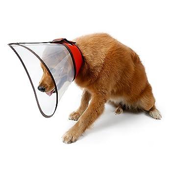 Amazon.com: Suéters para E-Collar cono para perros mascota ...