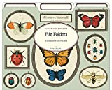 Cavallini Papers & Co Natural History Insects Heavyweight File Folders (Set of 12)