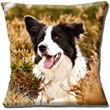 "Border Collie Adult Black & White Outdoors in Heather - 16"" (40cm) Pillow Cushion Cover"