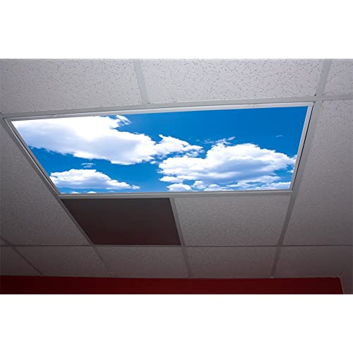 Fluorescent Light Cover Replacement