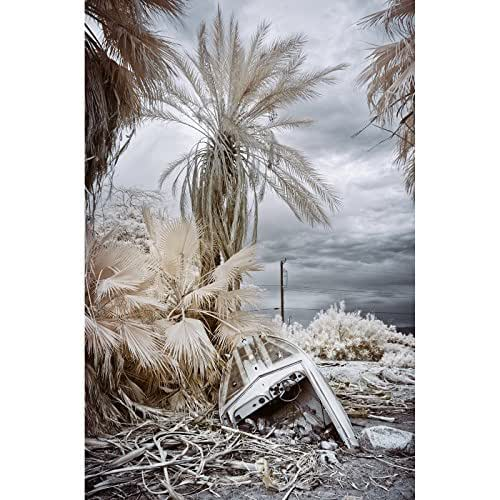 Amazon.com: Rough Day Wrecked Speedboat And Palm Trees