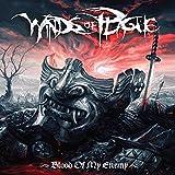 61mYQkgFpSL. SL160  - Winds Of Plague - Blood Of My Enemy (Album Review)