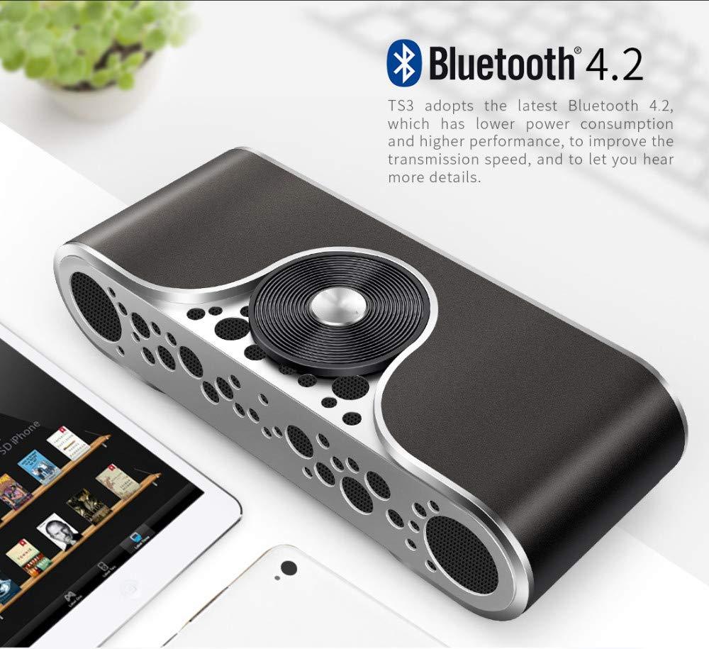 ZJHNZS Altavoz Bluetooth Altavoz Bluetooth Altavoz ...