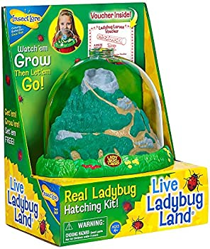 Save 40% on select Insect Lore Toys