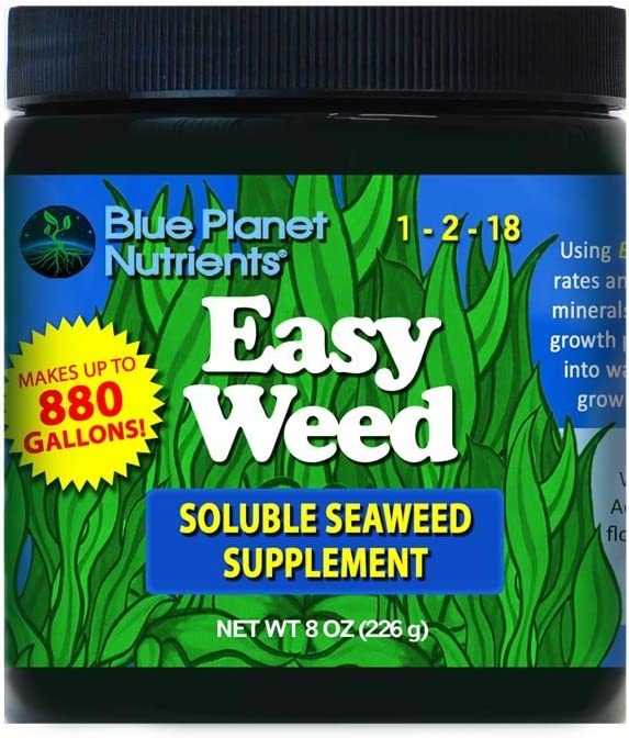 Easy Weed Soluble Seaweed Kelp (8 oz) Ultra Concentrated | Makes UP to 880 GALLONS | for All Plants & Gardens | Hydroponic Coco Coir Soil Aero Gardens Soil-Less | Powdered Kelp Fertilizer Supplement