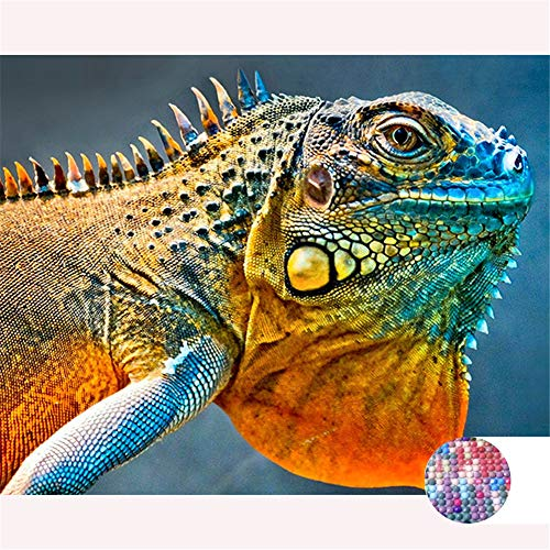 LIPHISFUN DIY 5D Diamond Painting by Number Kit for Adult, Full Round Resin Beads Drill Diamond Embroidery Dotz Kit Home Wall Decor,30x40cm,Colorful Lizard -