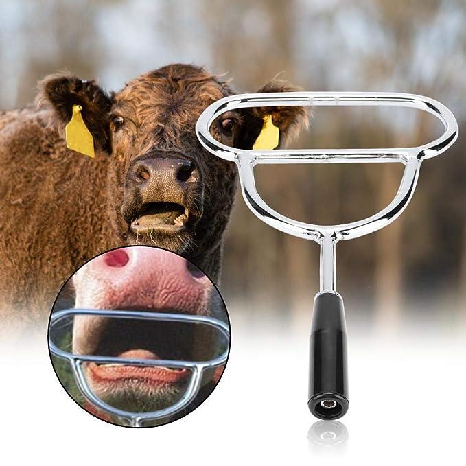 Ganado Vaca Oveja Cerdo Caballos Ganado Animales Abridor de boca ...