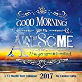 2017 Say What? - GOOD MORNING YOU ARE AWESOME - CONNIE HALEY Calendar - 12 x 12 Wall Calendar