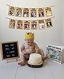 JeVenis Wild One Baby Photo Banner Wild One 12 Month Banner First Birthday Decorations 12 Month Photo Banner First…