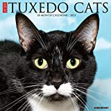 Just Tuxedo Cats 2021 Wall Calendar