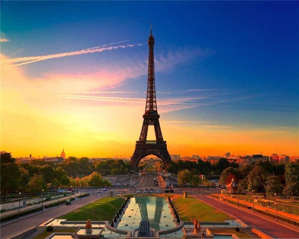 RHUA/Puzzles 1000 Pi/èces Pour Adultes France Tour Eiffel Coucher De Soleil Art Moderne D/écor /À La Maison Jouets En Bois Jeux Amusants Grand Cadeau /Éducatif Pour Enfants