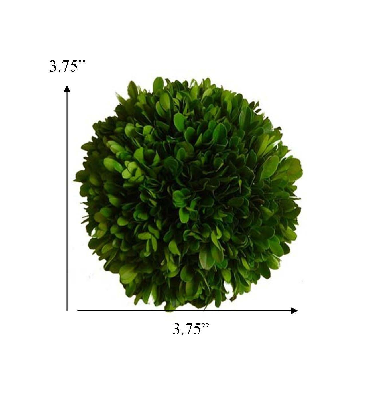 Mills Floral Company Boxwood Ball 4''