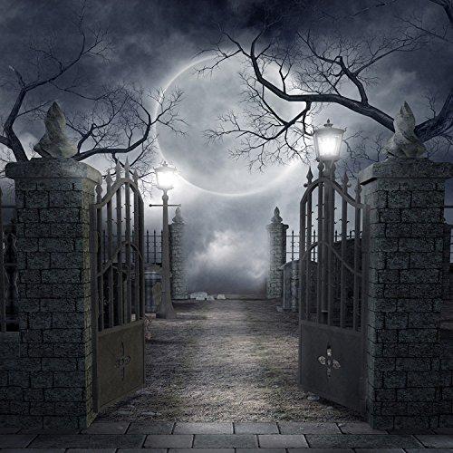 5x7ft Vinyl Digital Halloween Hallowmas Moon Night Park
