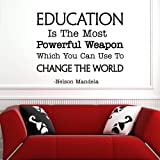 Amazon.com: Educational Wall Quotes Removable Vinyl Decal ...