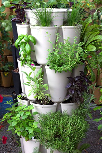 Huge GreenStalk 5 Tier Vertical Garden Planter with Patented