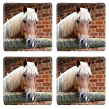 Luxlady Natural Rubber Square Coasters Image ID: 43545570 Portrait of horse of palomino color in the stall