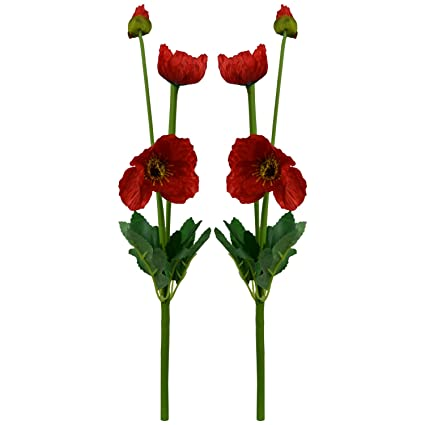 Buy thefancymart artificial poppy silk flower sticks set of 2 42 thefancymart artificial poppy silk flower sticks set of 2 42 cms 165 inchs mightylinksfo