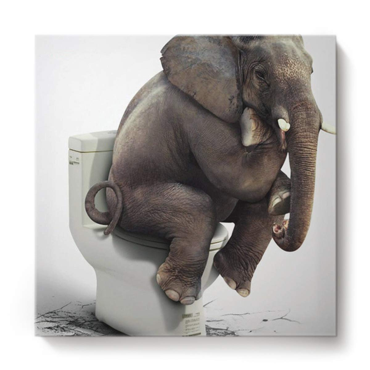 Square Canvas Wall Art Oil Painting for Bedroom Living Room Home Decor,Funny Elephant Sitting on The Toilet Animal Pattern Office Artworks,Stretched by Wooden Frame,Ready to Hang,16 x 16 Inch