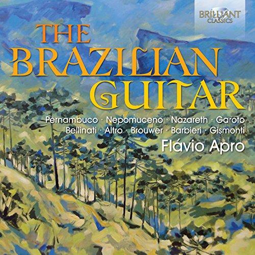 (Brazilian Guitar)