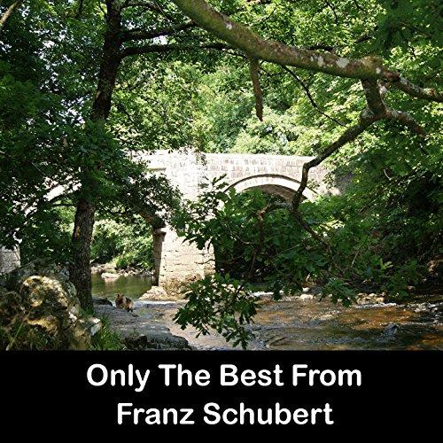 Only The Best From Franz Schubert (Best Of Franz Schubert)
