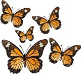 Five Brown & Orange Butterflies - Etched Vinyl Stained Glass Film, Static Cling Window Decal