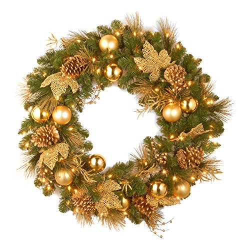 National Tree 24 Inch Decorative Collection Elegance Wreath with 50 Battery Operated Warm White LED Lights (DC13-109-24W/B) by National Tree Company