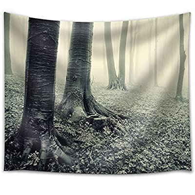 Gorgeous Craft, Grayscale Photo of Trees with Roots Above Ground, With a Professional Touch
