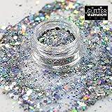 Chunky Silver - GlitterWarehouse Chunky Loose