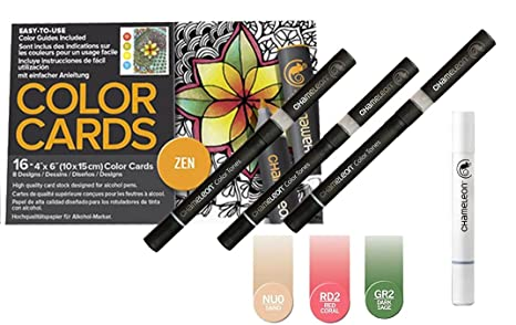 Camaleón de color cambiante Kit de arte: 16 tarjetas de color gris y 3 marcadores