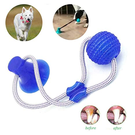 Pelota de Cuerda con Ventosa, Multifunction Pet Molar Bite Toy ...