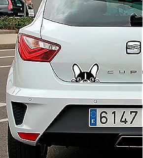 Pegatina coche Perro bulldog frances 16x10cm | Adhesivo de Facil Colocación | Pegatina para Coche Económica
