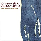 Thin Shells of Revolution by Primordial Undermind (2003-10-07)
