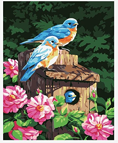 Wowdecor Paint by Numbers Kits for Adults Kids, Number Painting - Garden Bluebirds, Happy Family 16x20 inch (Framed)