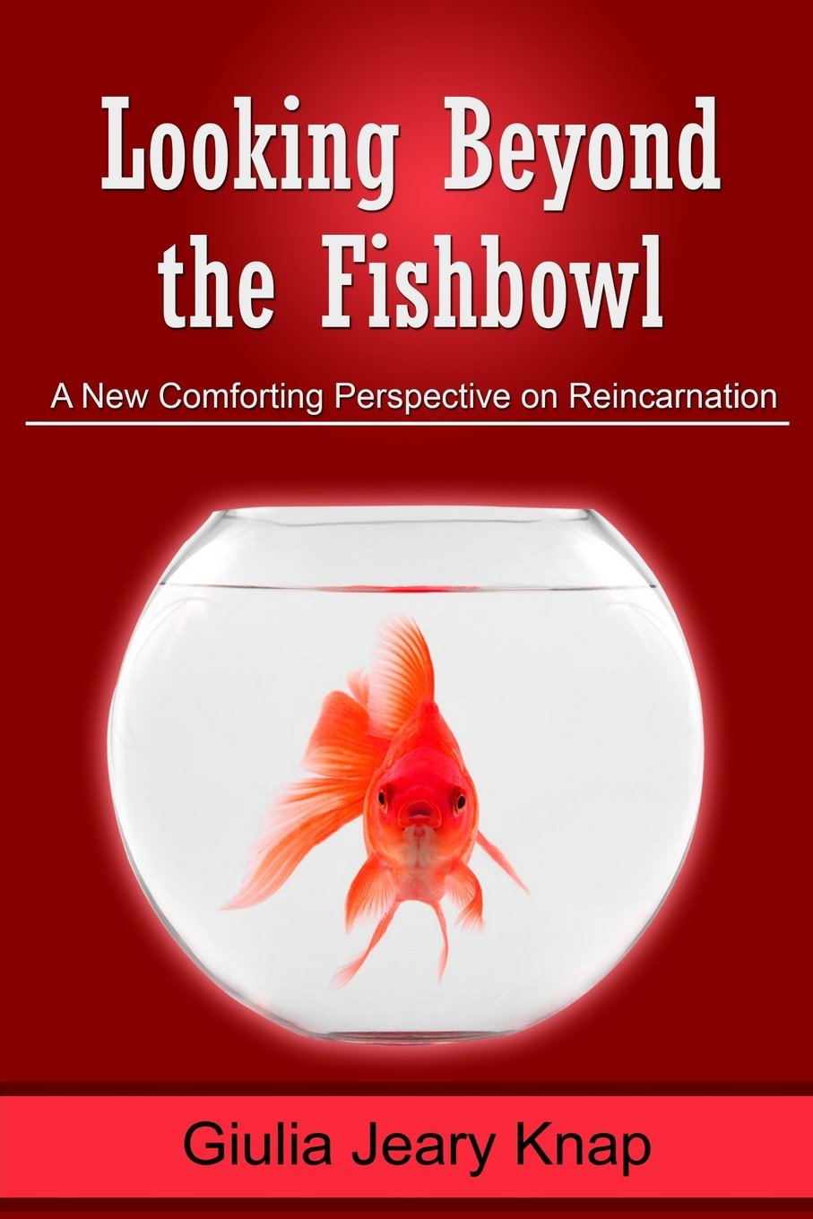 Looking Beyond the Fishbowl: A New Comforting Perspective on Reincarnation (Between Heaven and Earth) (Volume 2) ebook