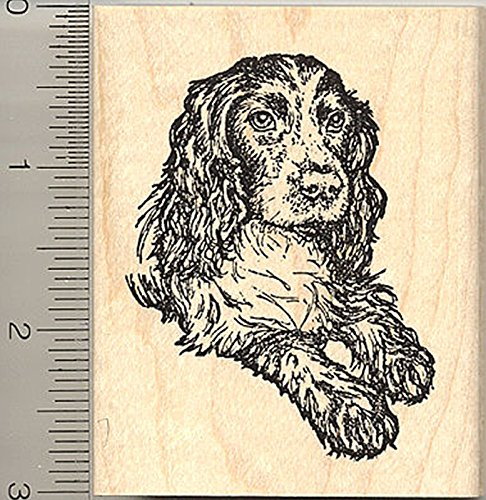Black English Cocker Spaniel Rubber Stamp, Sporting Dog