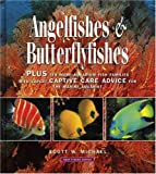 Angelfishes & Butterflyfishes: Plus ten more Aquarium fish families with expert Captive Care Advice for the Marine Aquarist