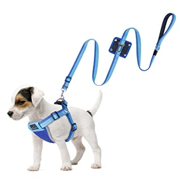 Dog Seat Belt Harness >> Petbaba No Pull Dog Harness Reflective Safety At Night Step In Vest In Walking Training