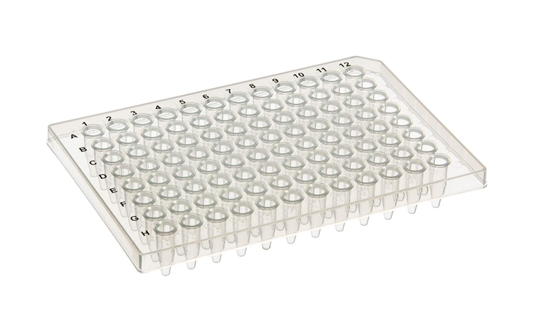 EarthOx PCR Plate 96 Well - Half-Skirt (10 Plates) by EarthOx