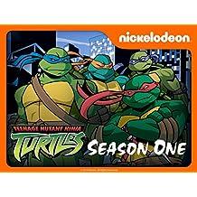 Teenage Mutant Ninja Turtles Season 1 (2003)