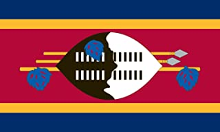 product image for Valley Forge Flag 2-Foot by 3-Foot Nylon Swaziland Flag