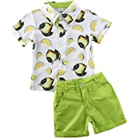 Toddler Baby Boy Short Sleeve Button Down Shirt & Shorts Set 2T 3T 4T 5T 6T Outfits Summer Clothes