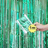Dreamyth Foil Fringe Curtain, 1 Pack Black Tinsel Foil Fringe Photo Backdrop for Birthday Party Wedding Decor (Green, 1mx1m)