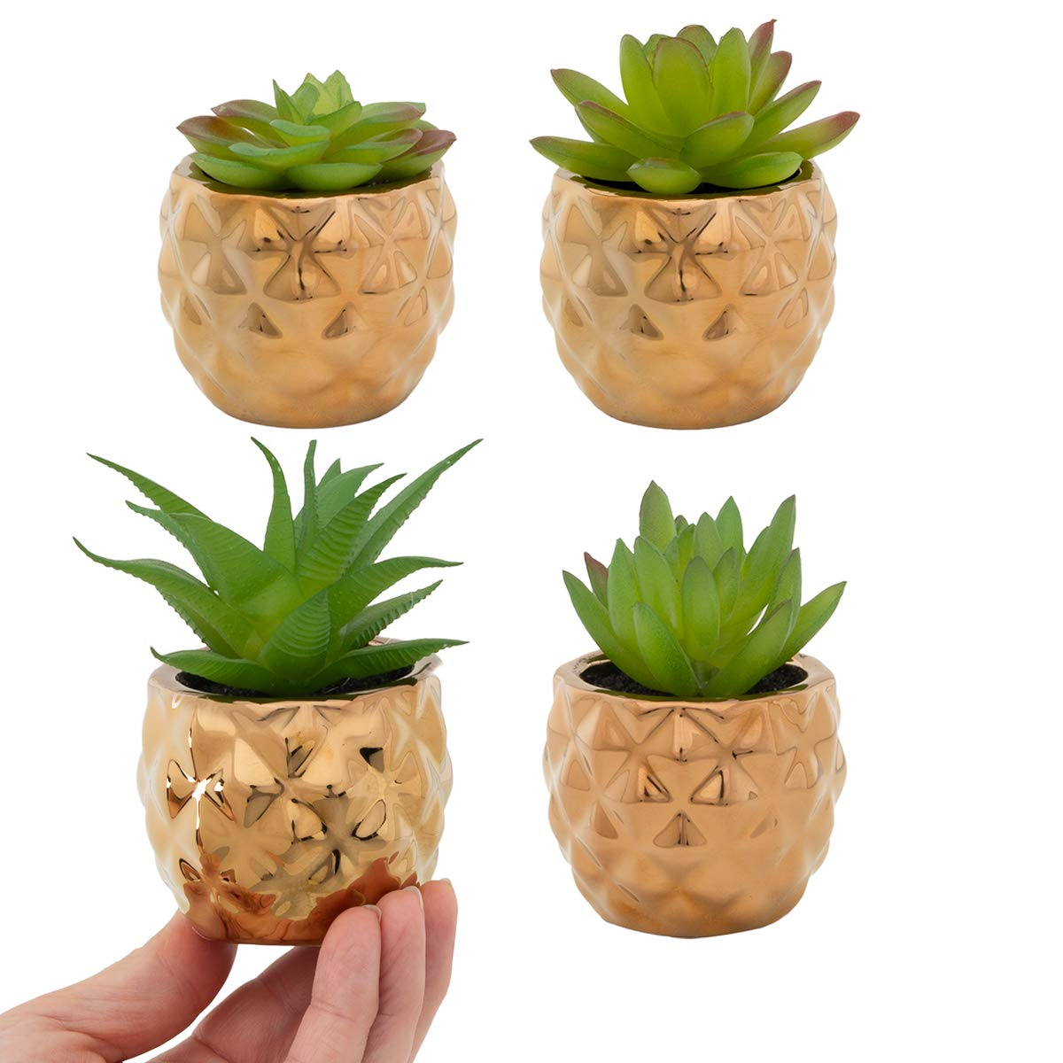 Home Trends フェイク多肉植物4個セット 金鉢 人工植物 ホームインテリア オフィス装飾 B07HCPCWZ8