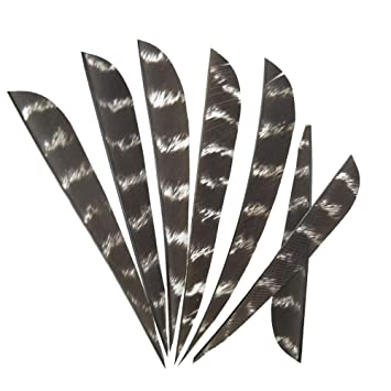 """4/"""" 5/'/' Right Wing Shield Natural Turkey Feather Archery Arrow Fletching Hunting"""