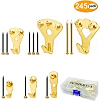TERMATH 245 Pack Picture Hangers, Professional Photo Frame Hooks with Nails, 6 Sizes, Supports 10-100 lbs, Golden