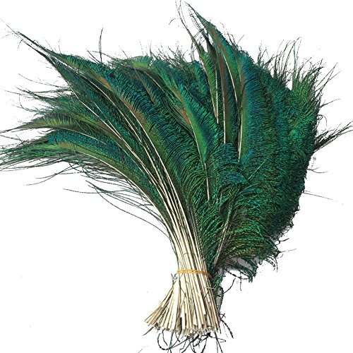 MIPPER Beautiful Natural Peacock Sword Feathers 10~12 Inch DIY Accessories Crafts Home Flower Arrangement Plumes Material (50 pcs)